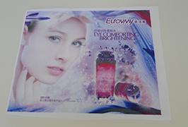 Zastava Tkanina Tiskana traka ispisana eko otapalom pisača 1.6m (5 stopa) WER-ES160 4