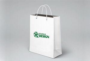 Papir-Bag-tisak-uzorak-tiskani-po-A1-size-UV-printer-Wer-EP6090UV