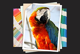 Foto-papir tiskan na eko otapalu od 1,8 m (6 stopa) WER-ES1802